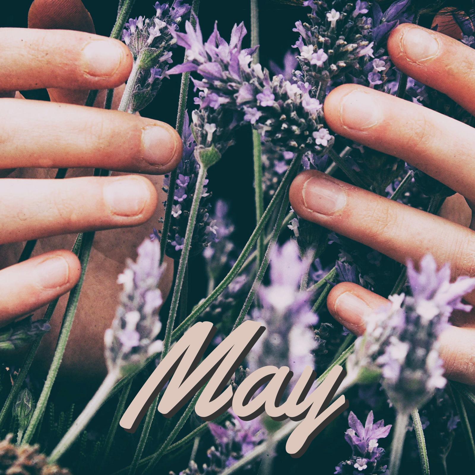 May 2020 meeting: Aromatherapy