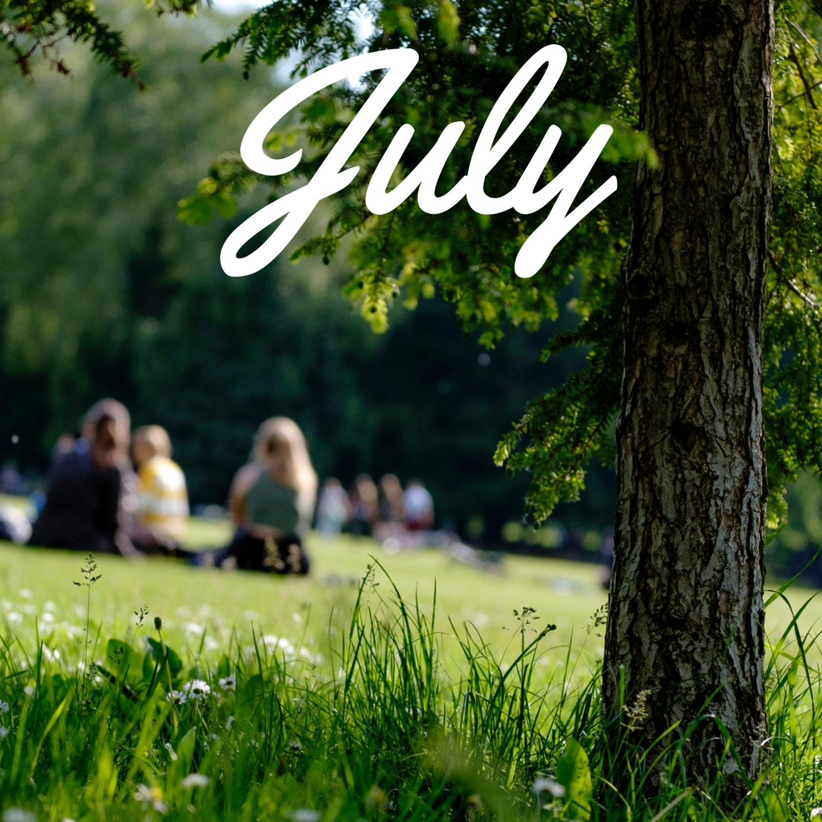 July 2020 meeting: Picnic & Olympics in the park